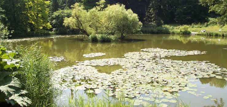 Biparcours Botanischer Garten Erlebnistour Handy Rallye